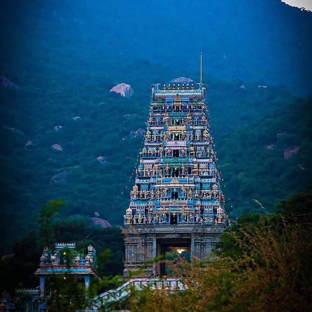 Classical Tamilnadu Tour